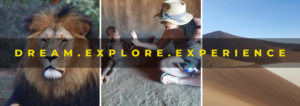 Our Stories - Travelling Trends